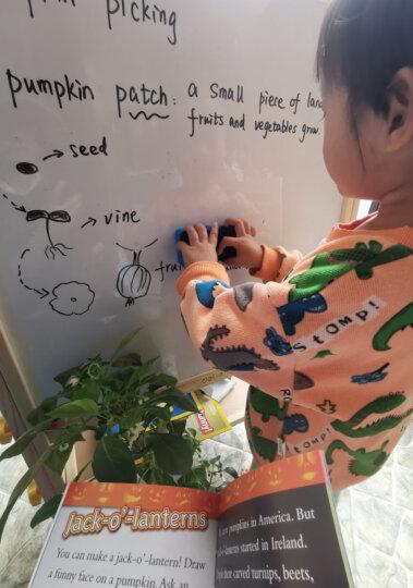 得力(deli)大号可升降进口实木双面磁性画板学生白板画画绘画文具画架儿童水彩笔彩色铅笔颜料玩具生日礼物 晒单图