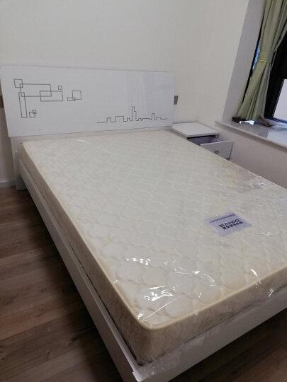 双虎(SUNHOO) 双人床1.5米床1.8米床简约现代床 卧室家具套装组合B6 低箱床+床头柜*2+舒梦床垫+B1衣柜 1800*2000mm 晒单图