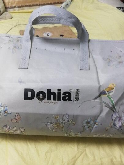 多喜爱(Dohia) 蚕丝羊毛被子 二合一子母被  2条装 亲肤保暖春秋被冬被四季被芯 馨悦  约10斤 229*230cm 晒单图