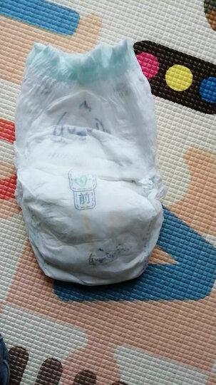 帮宝适一级帮拉拉裤M58片(6-11kg))中码裤型纸尿裤尿不湿轻薄透气 晒单图