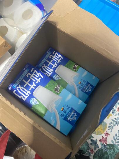 德国DMK进口牛奶 欧德堡(Oldenburger)全脂纯牛奶1L*12盒 早餐奶 高钙奶 整箱家庭装 晒单图