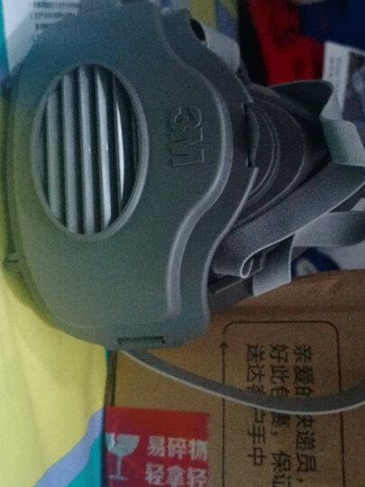 3M 3200防尘面具工业防粉尘KN95防雾霾PM2.5口罩水泥打磨煤矿工厂装修电焊夏透气 中码3200配活性炭滤棉 晒单图