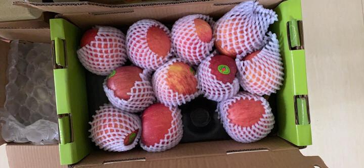 陕西 阳光硕果礼盒 12枚苹果  果径85-90mm 生鲜 新鲜水果 晒单图