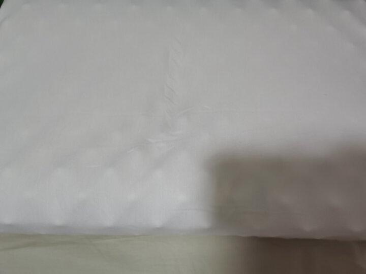 睡眠博士(AiSleep)枕芯 椰梦超大颗粒进口乳胶枕 颈椎按摩枕头 泰国橡胶枕  枕芯 晒单图