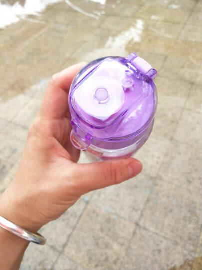 迪士尼(Disney)儿童水杯塑料吸管杯防漏背带幼儿水瓶婴儿杯子公主水杯宝宝喝水杯450ml粉色公主 晒单图