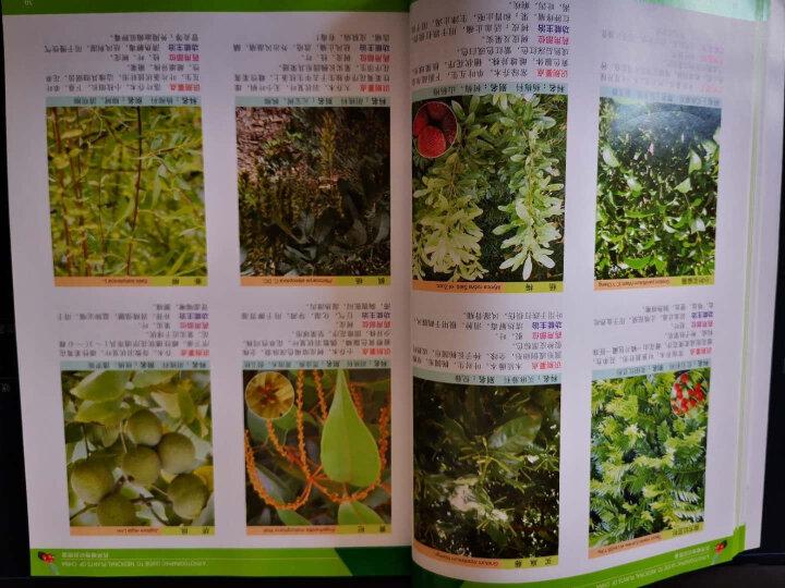 药用植物识别图鉴(第二版) 晒单图