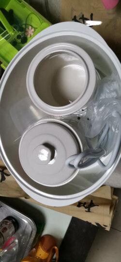 天际(TONZE)电炖锅隔水炖 智能煲汤1锅3胆GSD–W122B 2.2L 晒单图