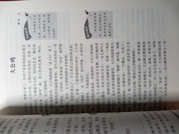 小学生优秀作文作文第一工具书(共4本) 好词好句好段分类大全精选写作技巧书籍3456年级适用 晒单图