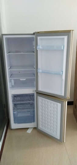 上菱冰箱节能静音省电家用租房大容量冷藏冷冻电冰箱 183升双门金 183升金色双门 晒单图