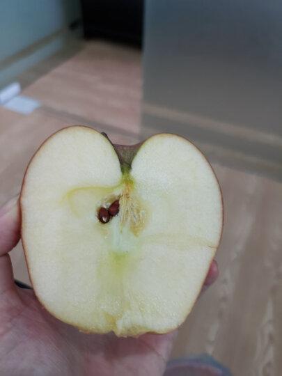 柏果瑞 甘肃天水花牛苹果 粉面苹果  蛇果 现摘现发新鲜水果5斤大果 晒单图
