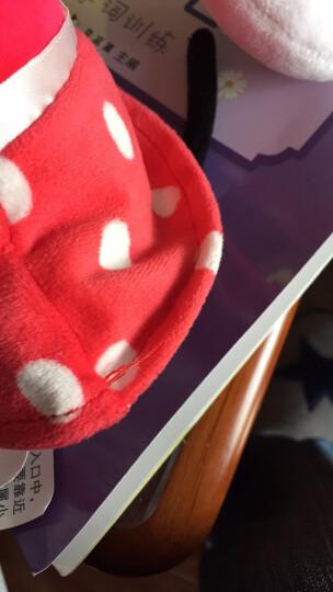 """迪士尼Disney 清新系列毛绒玩具 生礼物公仔抱枕 玩偶布娃娃靠垫 9"""" 米妮 DSN(T)1166 约30厘米 晒单图"""