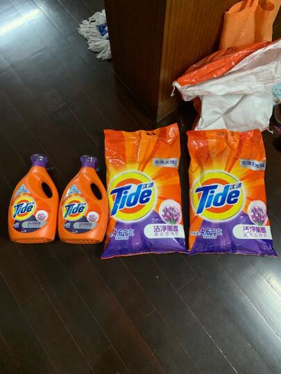 汰渍 Tide 全效洁净洗衣粉(洁雅百合香)5kg/袋(新旧包装随机发货) 晒单图