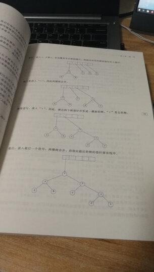 数据结构与算法分析:C语言描述(原书第2版)  晒单图