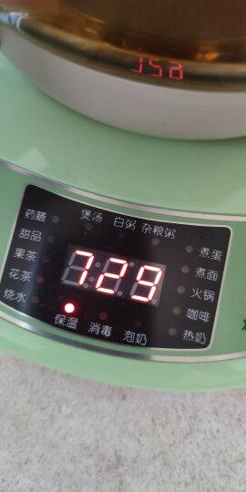 小熊(Bear)养生壶 煮茶壶1.5L迷你电水壶烧水壶电热水壶 多功能花茶壶黑茶玻璃煮茶器YSH-B18T1 晒单图