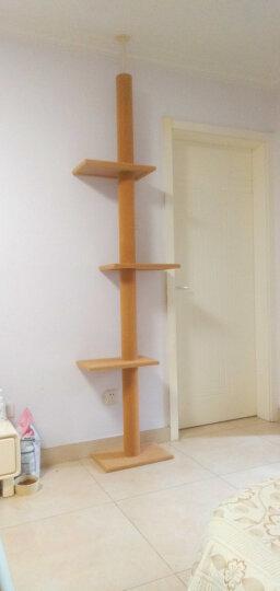 伊丽宠具 粉色 可爱剑麻猫抓板 宠物猫咪家具迷你单层小猫台 晒单图