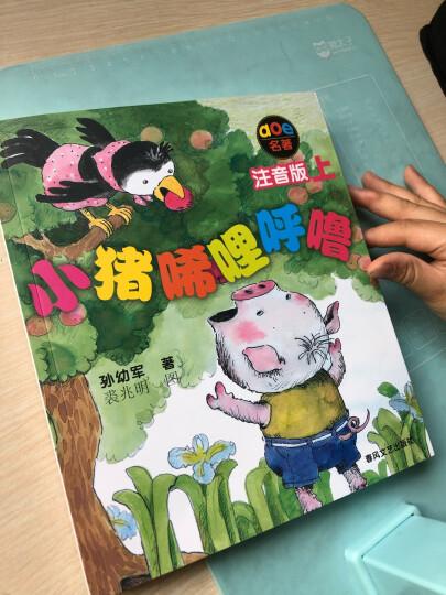 小猪唏哩呼噜(彩色注音版 套装上下册)  晒单图