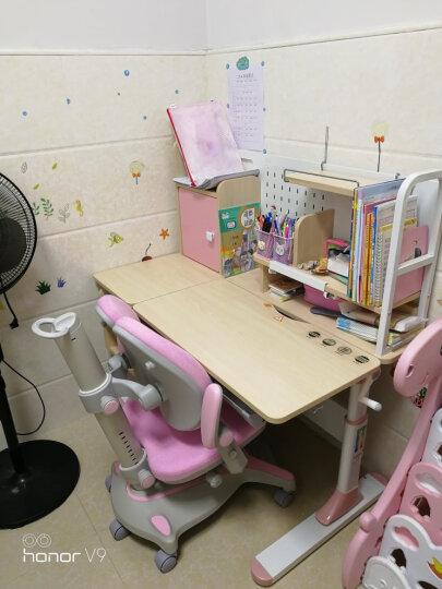 童画林 学习桌 儿童学习桌椅 儿童书桌实木学习桌 小学生写字桌椅套装 写字桌 组合可升降 蓝色1.2M净醛款书桌+双背扶手椅(实木) 晒单图