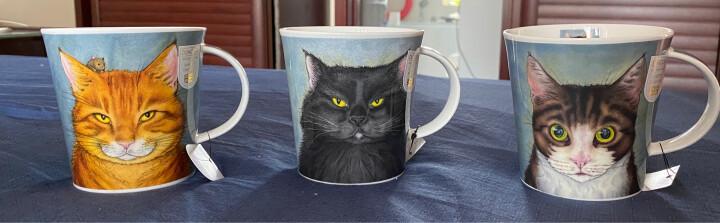 丹侬(dunoon)英国进口杯子创意猫咪骨瓷马克杯 大容量猫猫咖啡杯居家情侣杯办公室水杯 喵星人 喵星人-黑猫 晒单图