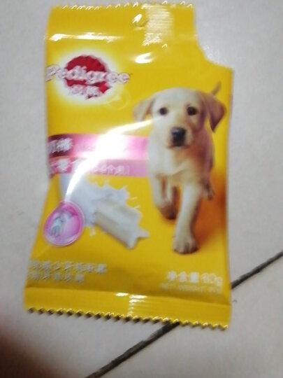 宝路狗粮 宠物狗零食 幼犬狗狗磨牙棒钙奶棒泰迪茶杯犬柯基 60g单包装 晒单图