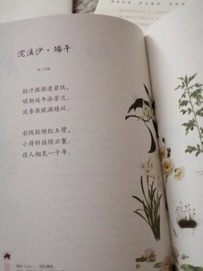 小学生必背古诗词(80首 修订版) 晒单图