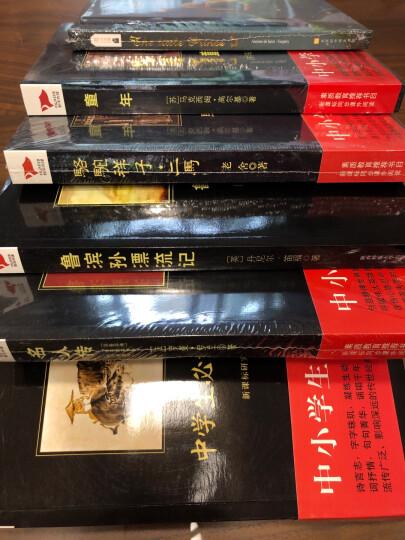 黑皮系列课外阅读:小海蒂(瑞士国宝级童话名著宫崎骏《阿尔卑斯山的少女》原著小说)六年级上册阅读 晒单图