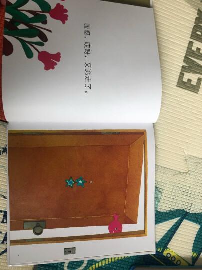 五味太郎:小金鱼逃走了 (爱心树童书) 晒单图