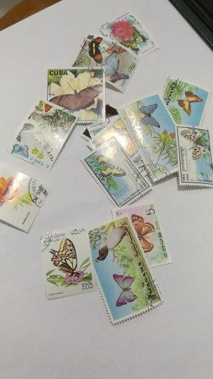 十里匠藏外国邮票信销邮票纪念邮票50枚不同专题邮票不重复集邮收藏 蝴蝶系列专题邮票 晒单图