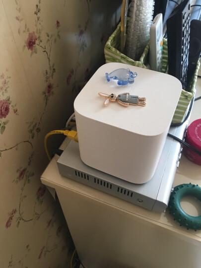 绿联(UGREEN)超五类网线 百兆网络连接线 Cat5e超5类成品跳线 家用装修电脑宽带非屏蔽八芯双绞线2米 11231 晒单图