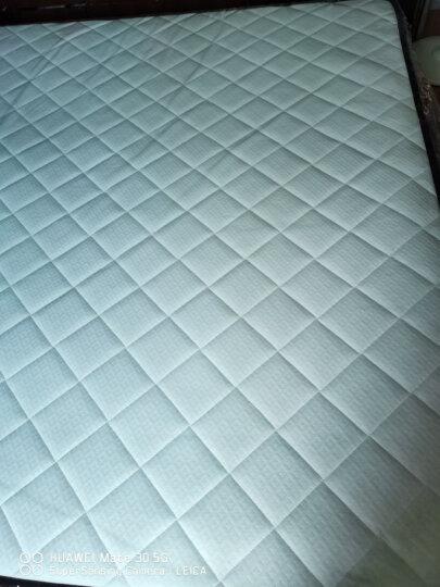 金海马(kinhom)防螨乳胶棉床垫床褥 双人 七区独立袋静音 席梦思弹簧床垫1.8米X2米X0.22米 WL029 晒单图