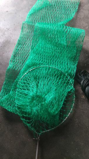 十八股线鱼护网袋简易折叠渔护鱼袋平底加宽鱼护网兜渔网渔具龙虾网 24厘米口圈款1.8米长 晒单图