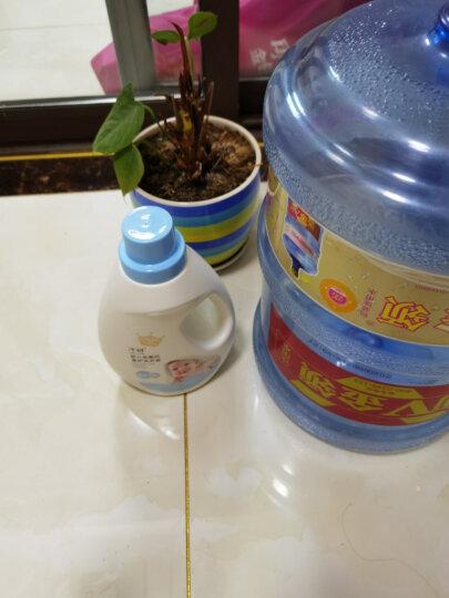 子初婴儿天然草本洗衣皂/液套装(洗衣液2L+洗衣皂150g*2块)宝宝儿童新生儿洗护用品 晒单图