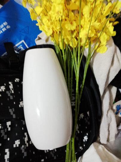 贝汉美(BHM) 陶瓷花瓶摆件高仿真花假花花艺套装家居客厅电视柜玄关办公室餐厅餐桌装饰品 大号花瓶+8支柠檬黄跳舞兰【套装价】 晒单图