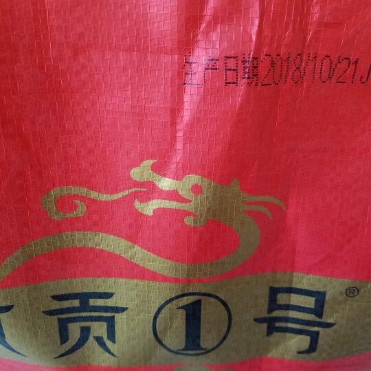 京贡1号 五常大米 稻花香米 生态香米 5kg东北大米 新米10斤  五常大米小产区基地直供 京贡1号大米10kg袋 晒单图