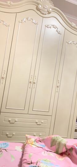 尊范 欧式衣柜 法式木质衣柜  四门大衣柜 卧室家具法式收纳衣柜 四门衣柜/2.01米 晒单图