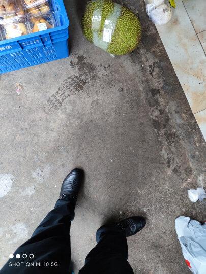 红蜻蜓男鞋子休闲皮鞋男士春季新品单鞋韩版潮流青年 系带加棉加帮黑色 39 偏大一码 晒单图