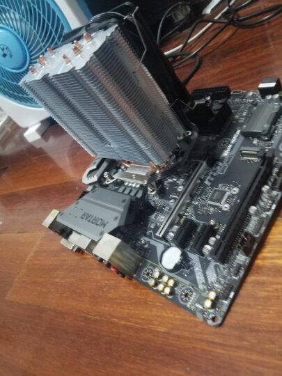 ARCTIC 导热硅脂 (台式机笔记本CPU显卡散热硅胶/导热系数8.5W/MX-4/2g装) 晒单图