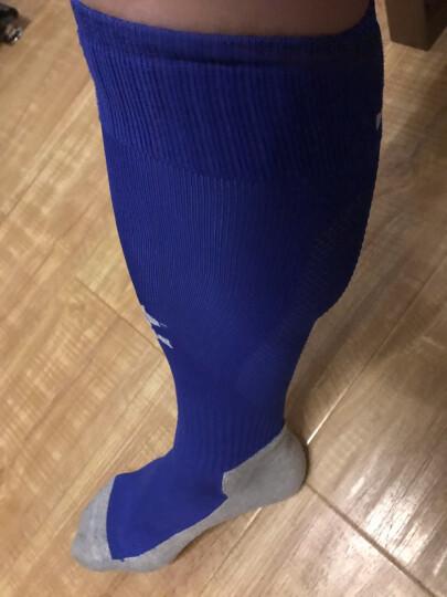 KELME卡尔美足球袜加厚毛巾底透气防滑长筒袜训练比赛袜子K15Z901 彩兰 均码(39-44) 晒单图