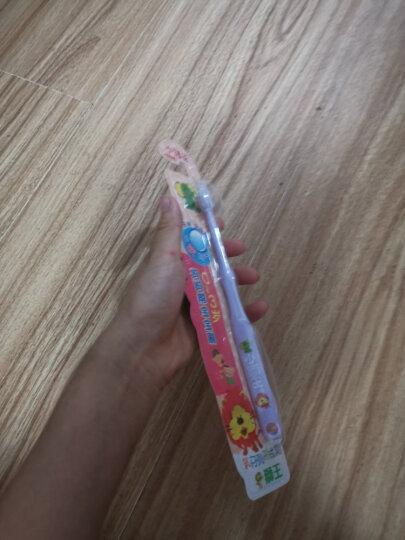 狮王(Lion)小狮王婴幼儿牙刷(1.5-3岁) 软毛牙刷 宝宝牙刷 防滑刷柄 小巧刷头 柔软护齿(颜色随机发货) 晒单图