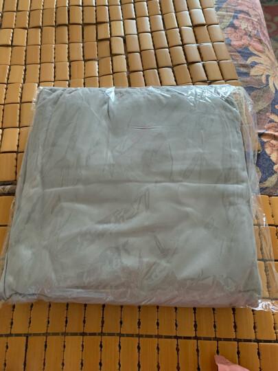 班哲尼 旅行隔脏睡袋床单酒店隔脏床单睡袋单人双人加宽便携式旅游防脏隔脏睡袋床单 紫色180*210cm 晒单图