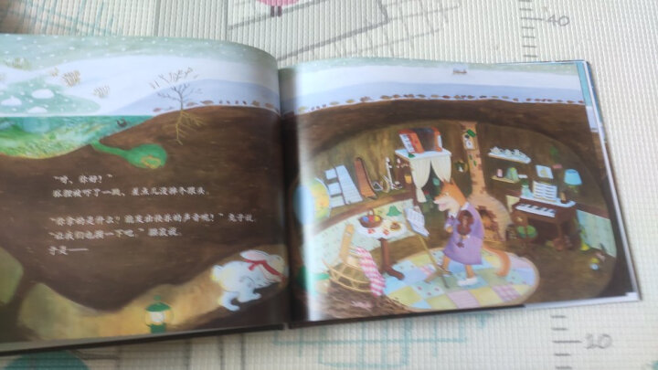环球旅行地图绘本:你好,世界!(套装5册 国家地理人文版 ) 晒单图