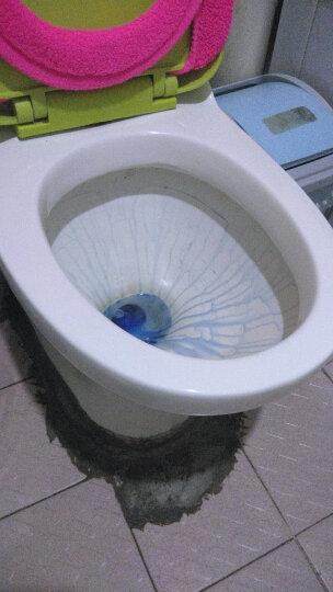 威王 除重垢马桶洁厕净500g*2 松木清香 厕所马桶清洁剂 洁厕液 洁厕灵 立白集团出品 晒单图