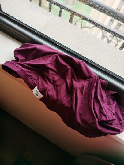 七匹狼男士内裤男平角裤冰丝中腰短裤透气大码四角裤头 【抗菌】100%棉4条 (175/90/XL)建议120-140斤 晒单图