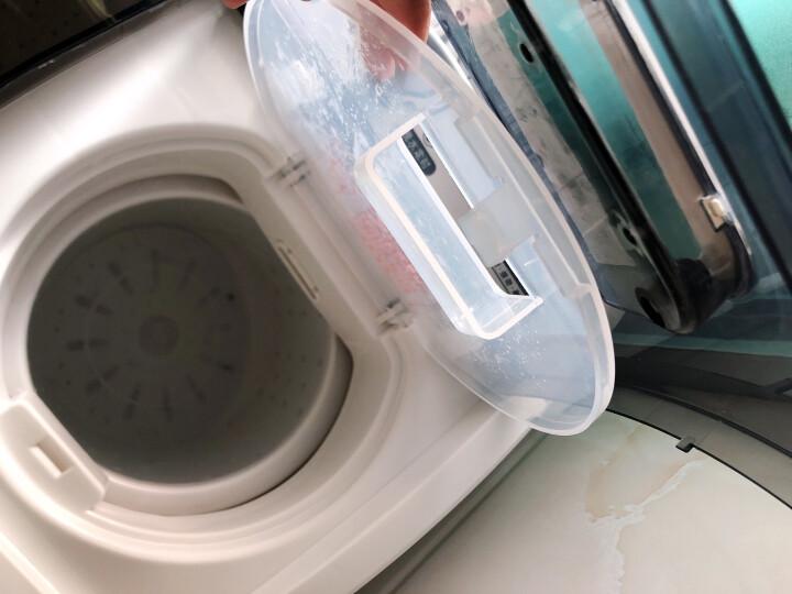 金帅4.5公斤全半自动洗衣机小迷你双杠双桶波轮婴儿童宝宝家用洗衣机双电机无需安装插电即用洗脱可同时进 4.5公斤【强力风干+双桶双电机+无需安装】 晒单图