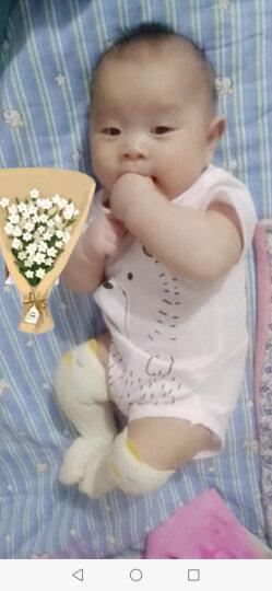 皮诺可 婴儿连体衣夏婴儿衣服哈衣爬爬服纯棉包屁衣新生儿连体衣短袖P0178a 粉红色 66cm(6个月的宝宝建议身高59-66cm) 晒单图