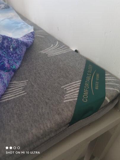 初漫天然乳胶床垫记忆棉床垫子床褥1.5米1.8米榻榻米床垫可折叠加厚打地铺学生单人宿舍记忆海绵褥子 针织棉波纹白-加厚10厘米舒爽款 1.5*2.0m 晒单图