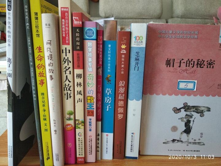 小兵张嘎/百年百部经典书系 中小学生5-6年级阅读指导书目 晒单图