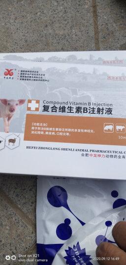 中龙神力 复合维生素B注射液西兽药 猪用马牛羊开胃药 兔猫狗狗宠物消食低温不食药 兽用针剂 晒单图