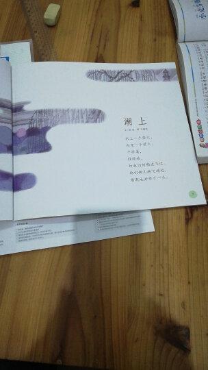 正版 蝴蝶豌豆花绘本 平装中国经典童诗 金波著3-6-8岁儿童启发童话故事书一二年级小学生课外书籍 晒单图