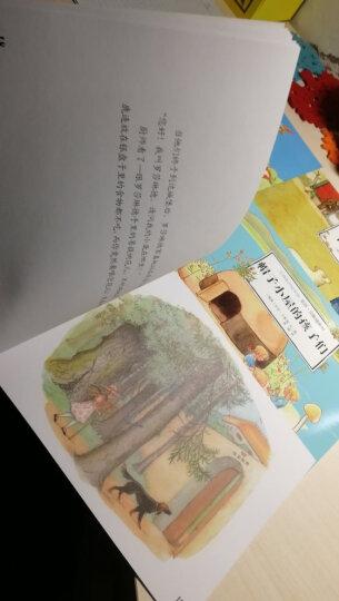 大师绘本馆(套装共6册)艾莎爱的经典图画书 晒单图