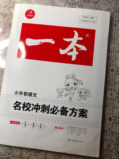 2017年一本:名校冲刺必备方案 语文(小学升初中总复习资料)/开心教育 晒单图